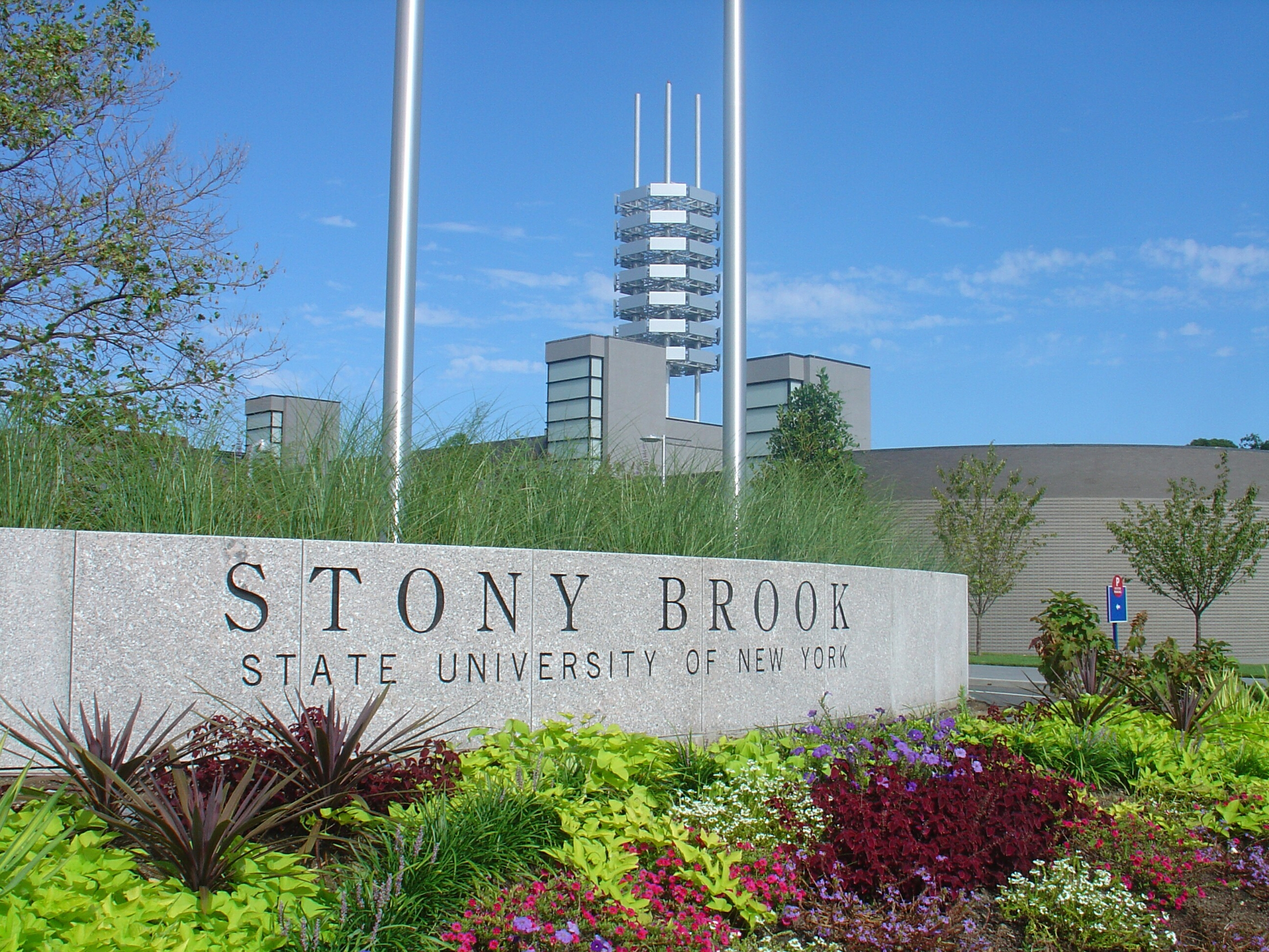 stony brook girls Stony brook university – gps address for parking:  all girls that are high  school players, grades 9-11, or play for an approved scholastic club team, can.